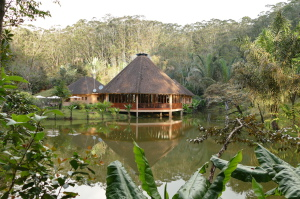 Vakona Lodge is located far in the forests near the reserves.