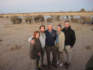 Last sundowners with elephants