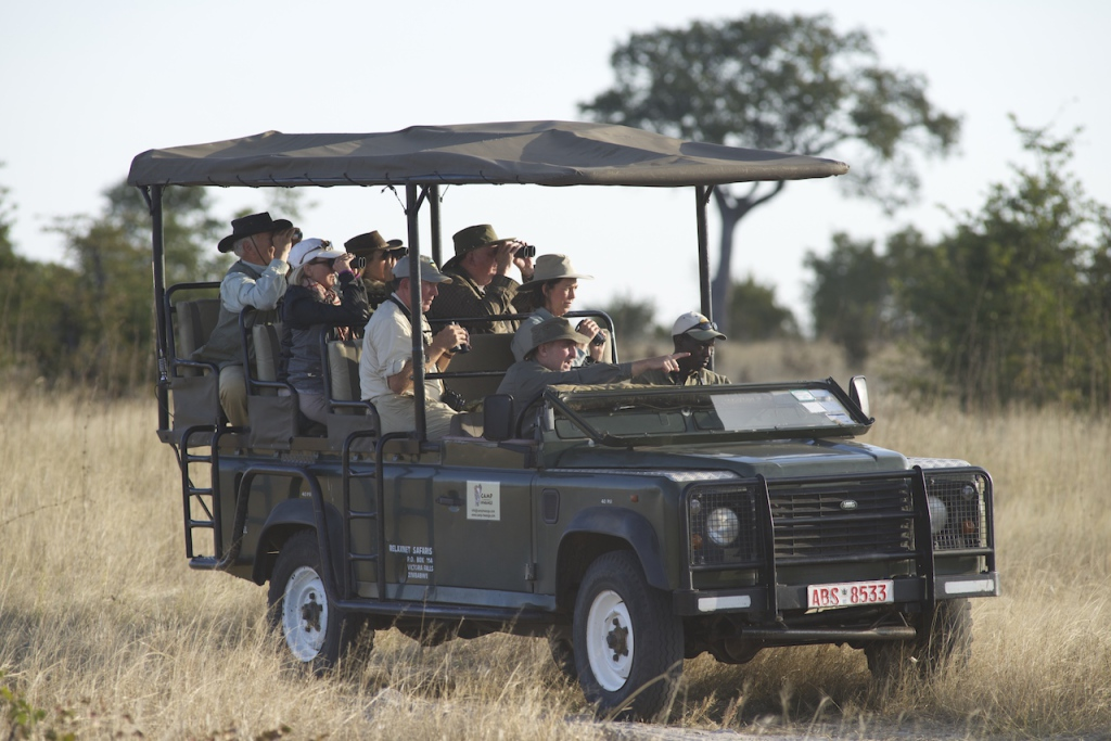 The guides business is to find and describe wildlife seen and interpret behaviours